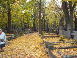 Powazkowski Cemetery