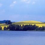 Masury Lake Regions