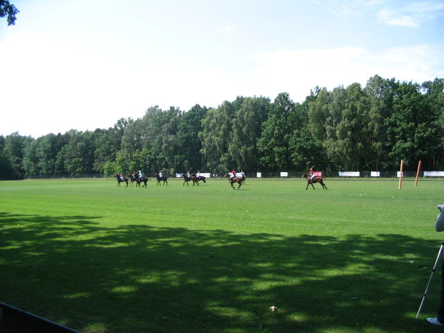 polo in Warsaw